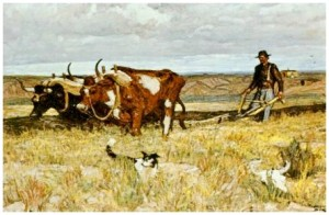 Harvey Dunn Oxen Plowing Team